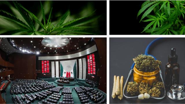https://mk0muggleheadfl9s2sr.kinstacdn.com/wp-content/uploads/2021/03/Mexicos-lower-house-approves-recreational-marijuana-bill-640x360.png