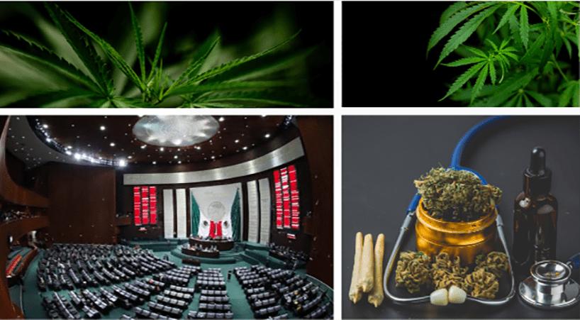 Mexico's lower house approves recreational marijuana bill