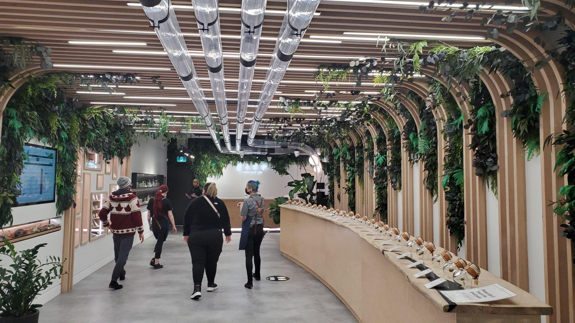 4/20 weed sales rebound 8% in North America: Cova