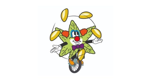 https://mk0muggleheadfl9s2sr.kinstacdn.com/wp-content/uploads/2021/04/Mexicos-cannabis-legalization-process-becomes-literal-circus--640x360.jpg