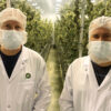 MTL Cannabis founders Rich and Mitch Clement