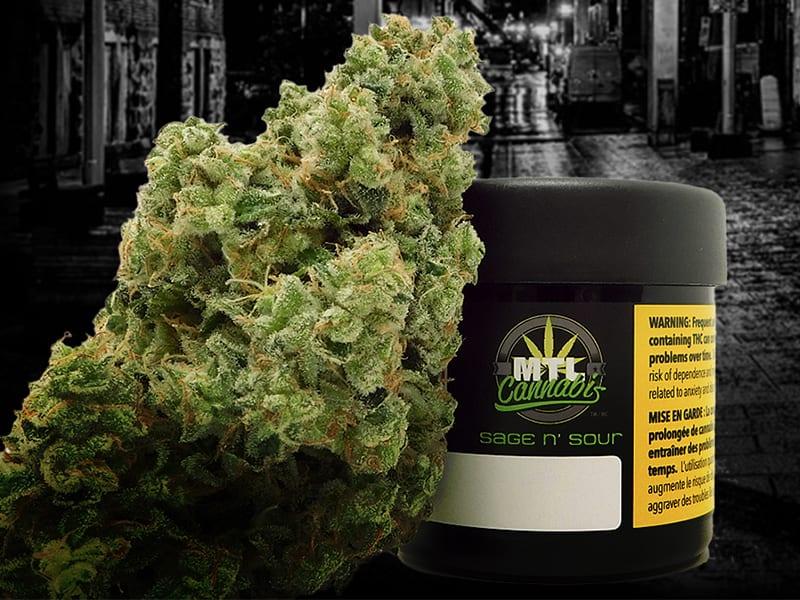MTL Cannabis Sage n Sour Jar