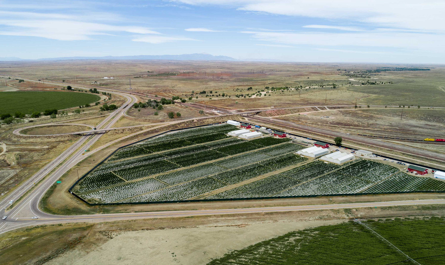 Curaleaf cuts US$67M deal for outdoor Colorado grower