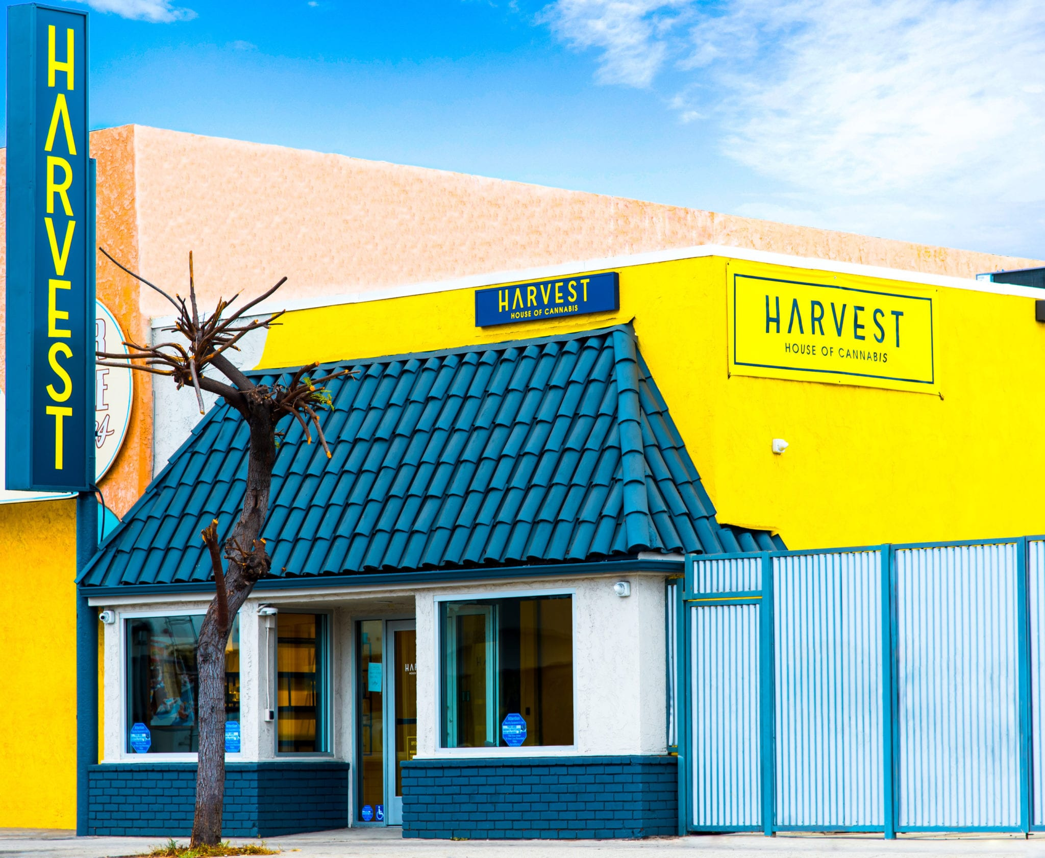 Harvest deal to test Trulieve's industry-leading profits