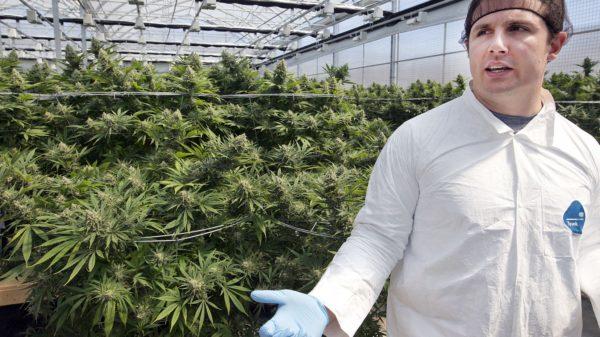 Hexo to enter US pot market with Colorado facility