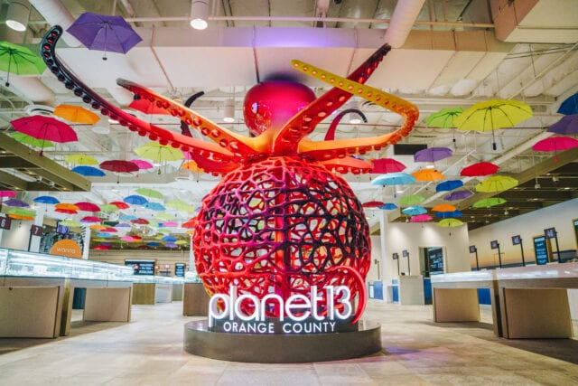 Inside Planet 13 Orange County is a large welcoming octopus