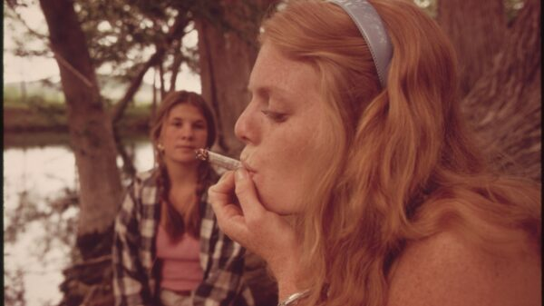 Cannabis use not associated with decline in cognitive skills, research shows