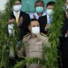 Thailand's deputy minister of health at cannabis cultivar ceremony