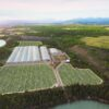 Aerial view of Yukon's ArcticPharm, the first and only lp