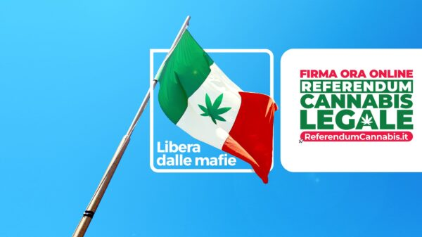 Italian flag with pot leaf in the middle waving