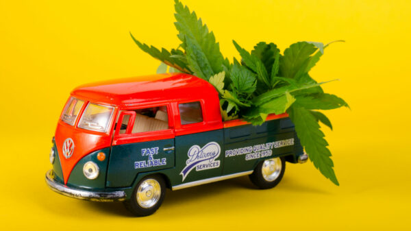 Ontario pitches permanent weed delivery and curbside pickup